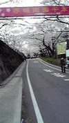 2010akagi